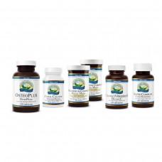 Программа «Здоровье соединительной ткани»